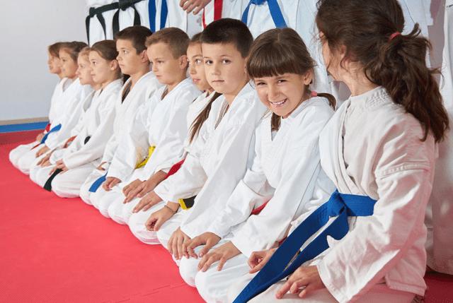 Kidsvirtualleader, Excel Martial Arts Woodbury MN